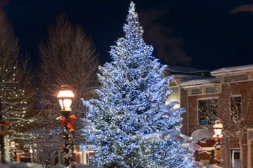 Breckenridge Colorado tree lights at night